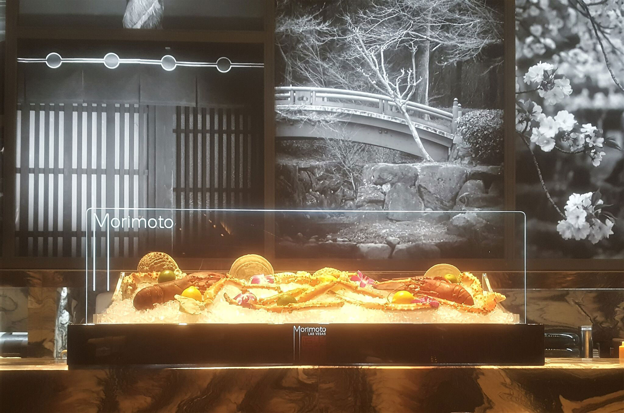 morimoto seafood display case with led lights